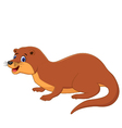 Cute Weasel Animal vector image vector image
