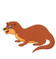 Cute Weasel Animal vector image