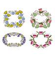 set flowers garden plants decorative frames vector image