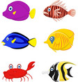 tropical fish cartoon vector image vector image