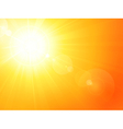 Vibrant hot summer sun vector