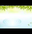 water and bamboo leaves background vector image vector image