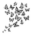 butterflies flow butterfly wing spring flying vector image vector image