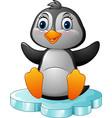 cartoon penguin sitting on floe vector image