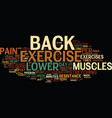 exercise can help relieve lower back pain text vector image vector image