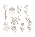 Hand Drawn Plant Monochrome Set vector image vector image