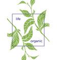 organic 1 vector image vector image