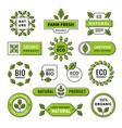 organic and natural emblem label badge set vector image vector image