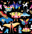 pattern multicolored butterflies vector image vector image