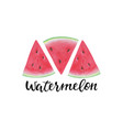 print with watermelon slice inscription vector image vector image