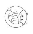 sleeping white cat isolated home pet sleeps on vector image