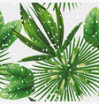 tropical leaves pattern snow vector image vector image