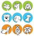 Dog Characters Set vector image