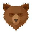 brown bear icon wildlife nature grizzly animal vector image