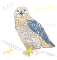 cartoon colorful bird Rough-legged Buzzard vector image