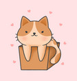 cute cat in a box cartoon hand drawn style vector image
