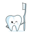 cute tooth with a toothbrush vector image