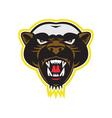 Honey Badger Mascot Head vector image vector image