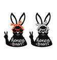 vintage set with rabbits in sunglasses vector image vector image