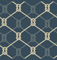 ropes background blue vector image