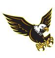 american bald eagle flying vector image vector image