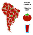 south america map composition of tomato vector image vector image