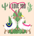 cute cartoon alpaca in love - mexican lama card vector image