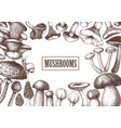 Edible mushrooms design hand drawn healthy food