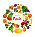 Garden and exoic fruits round poster vector image vector image