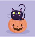 happy halloween black cat inside pumpkin trick or vector image