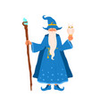 old wizard stand with witchery cane and owl vector image