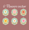 six pastel anemone rose hibiscus and water lilly vector image vector image