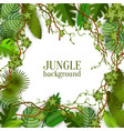 tropical jungle lianas and palms banner with space vector image vector image
