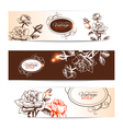Vintage banners with hand drawn roses vector image