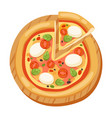 pizza flat icons isolated vector image