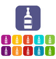 brandy bottle icons set flat vector image vector image