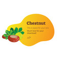 chestnut with copyspace background vector image vector image