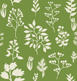 hand painted herbal seamless background vector image vector image