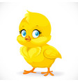 little cute yellow cartoon chick isolated on a vector image vector image
