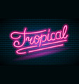 neon tropical pink inscription sign night bright vector image