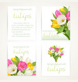 pink and white tulips on four vertical blank vector image vector image