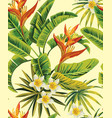 tropical plumeria exotic flowers pattern vector image