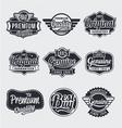 Retro vintage label Set vector image