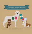dogs by country of origin latin american dog vector image vector image