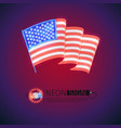neon sign wavy usa flag vector image vector image
