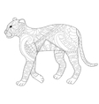 Panther coloring for adults vector image vector image