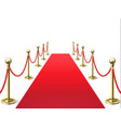 red carpet event celebrity carpets with rope vector image