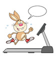 smiling rabbit cartoon character running vector image vector image
