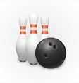 bowling ball and skittles vector image