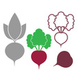 Beet Outline Silhouette Icon vector image vector image